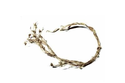 Rebenque de Pichana - Flower Whip