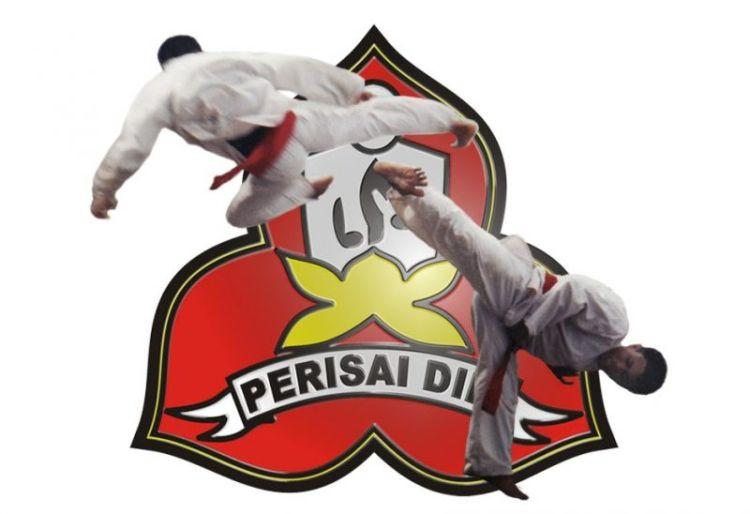 Perguruan silat Indonesia
