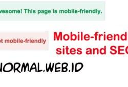 Mobile friendly Adalah Penentu dari SEO