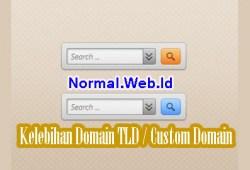 Kelebihan Domain TLD / Custom Domain Untuk Blog