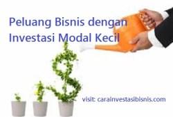 3 Peluang Bisnis Dengan Investasi Modal Kecil Yang Menguntungkan