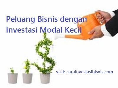 Ide Peluang Bisnis dengan Investasi Modal Kecil