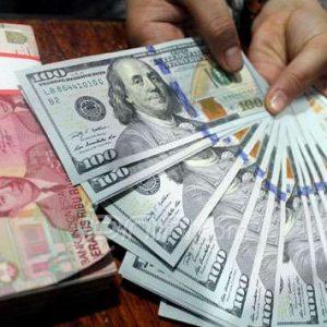 Jual Beli Dollar dan Investasi