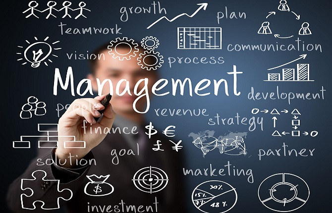 management bisnis