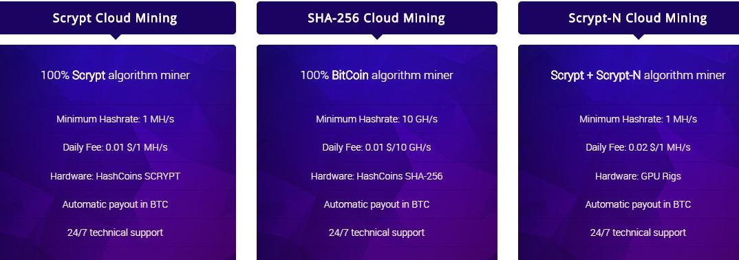 HashFlare cloud Mining bitcoin