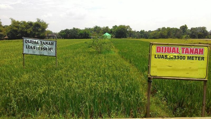 tanah dijual
