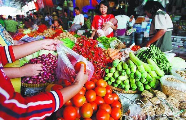 belanja sayuran