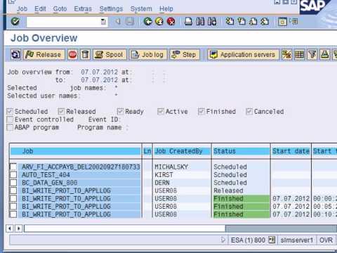 Sistem SAP