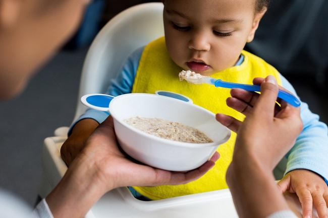 Makanan Bayi Organic