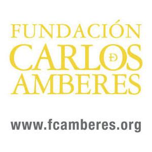 Foundation-Carlos-amberes