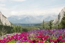 Banff Springs Hotel Canada
