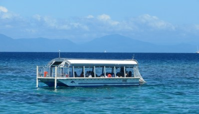 Glass bottom boats are a popular way to view underwater marine life on the Great Barrier Reef
