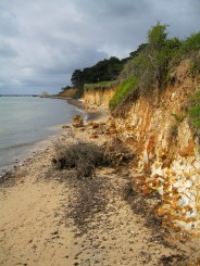 Damaged foreshore due to erosion