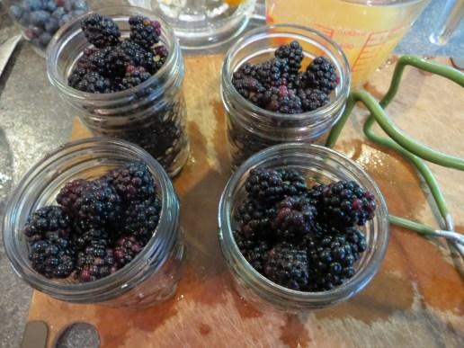 Preserving blackberries