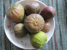 A good year for figs