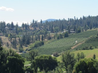 Vineyards & orchards Okanagan