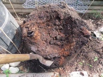 The finished compost