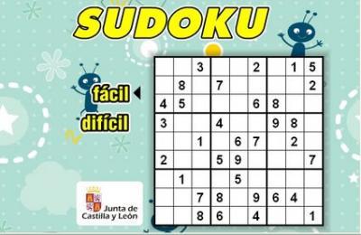 20100118180814-sudoku-.jpg