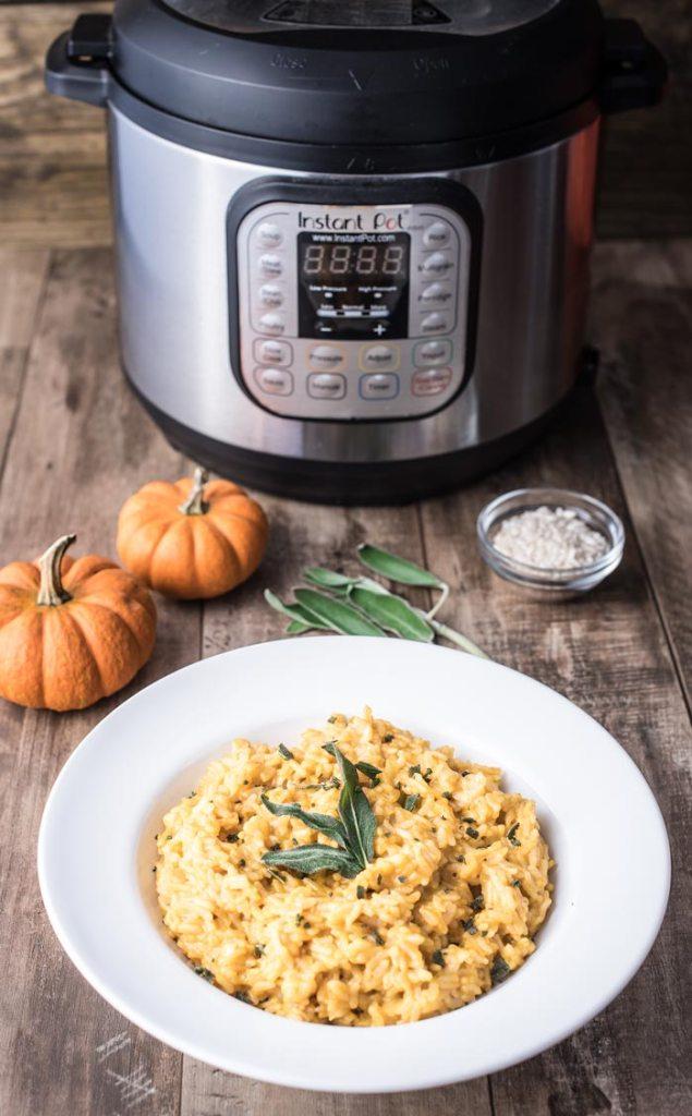 Instant Pot Autumn Recipe Round Up