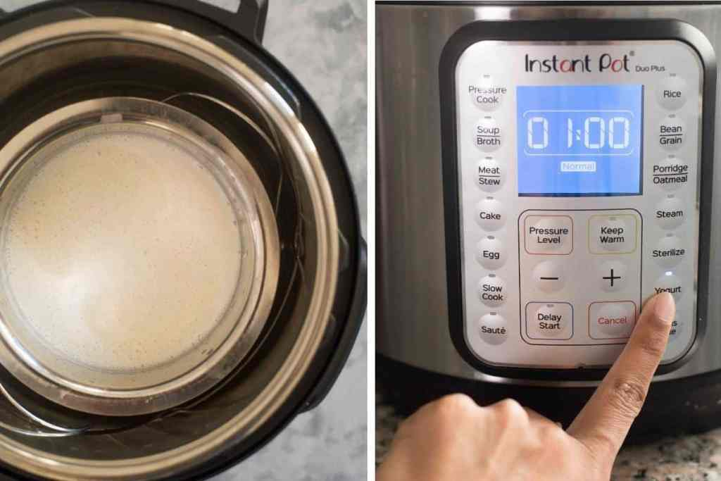 Fermenting appam batter in the Instant Pot on the 'yogurt' setting