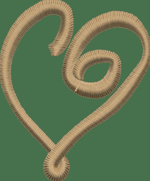 Corazón Enlace