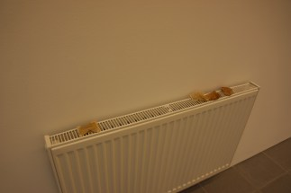 Teabags on a radiator, which spreads the delicious smell