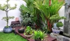 Desain Taman Minimalis dan Teras Rumah Menggunakan Material Kayu Di Dalamnya
