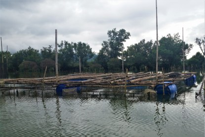Raft-method: constructed from bamboo and plastic drums
