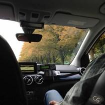 German cabbings