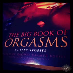 big book of orgasms picture - rachel kramer bussel - review
