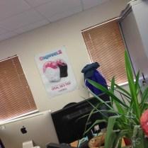 lovehoney tour visit sqweel poster