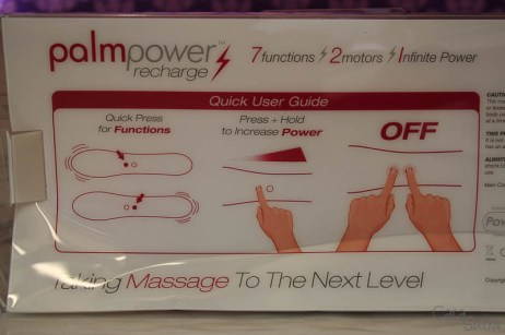 palm-power-recharge-800-8