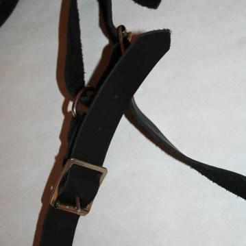 doxy-harness-5