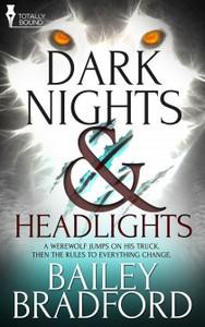 darknightsandheadlights