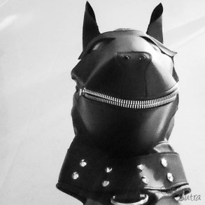 puppy hood phone pics cara sutra review-12