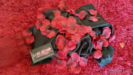 DewciBox Relaxing & Intimate Box Sex Toy Subscription Box Review Pleasure Panel-6