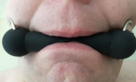 Wet & Naughty Silicone Bit Gag Review Cara Sutra Pleasure Panel-1