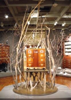 102 - cabinet of curiosities
