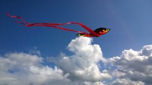 kite-1375114_960_720