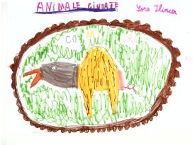 atelier Animalariul universal_3