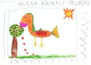atelier Animalariul universal_5