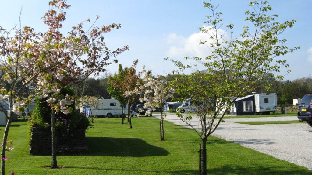 Club purchase Cornish campsite