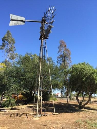 Ilfracombe windmill