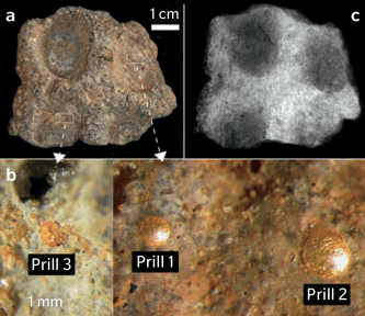 Fragment of coin mold excavated at Tadmekka: optical view (a); close-up of individual gold prills trapped in the mold's surface (b); x-ray view (c). C2RMF, x-radiography T. Borel and optical microscopy D. Bagault