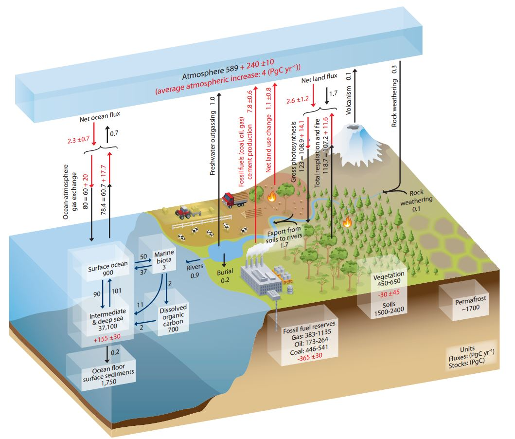 hight resolution of ipcc 1 note the diagram shows carbon
