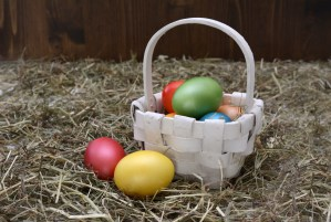 Easter Egg Hunt @ Carbrooke Village Hall and Green