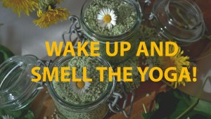 Wake up and smell the yoga! @ Carbrooke village Hall