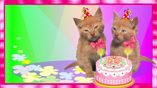 birthday wishes twins cards