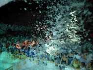 Festa de l'espuma009