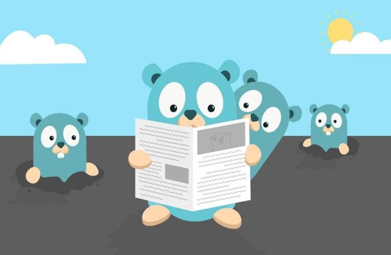 Libro gratuito: El pequeño libro de Go (en español)